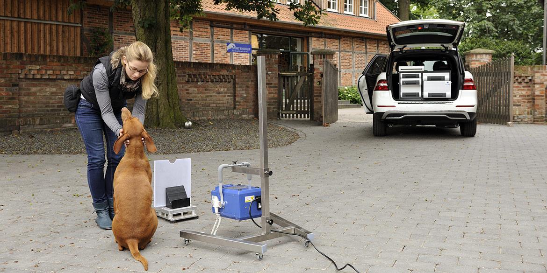 Making-of-Bild Shooting mit Tierarzt Dr. Sander für WDT Fotograf Daniel Möller Hannover